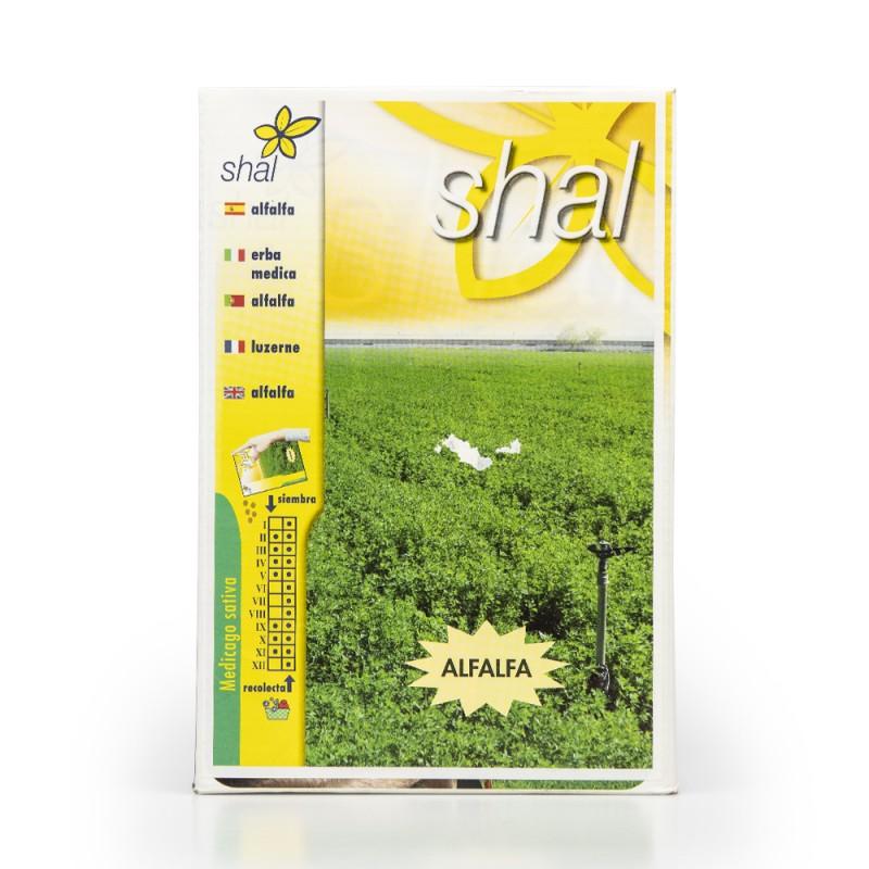 Alfalfa GEA (Medicago sativa) en 1 Kg.